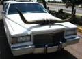 Big texan limo