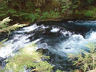 Mckenzie river sahalie 134
