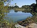 Willamette buford park 2 100_0020