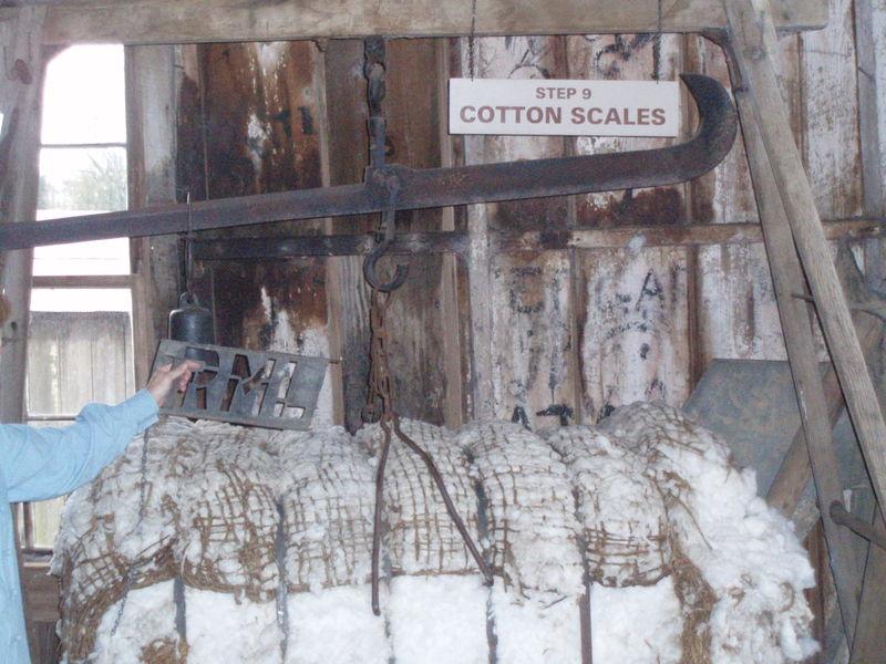 Cotton bale 54