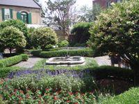 Garden 025