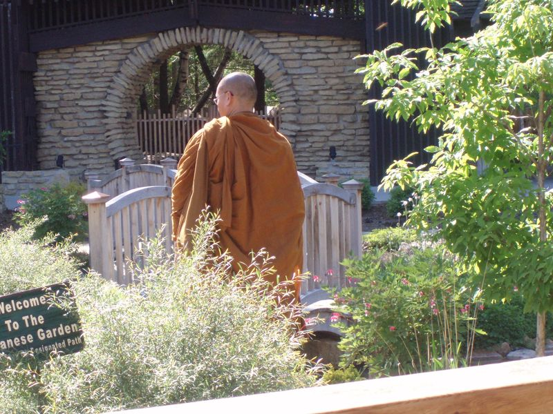 Garden - monk66