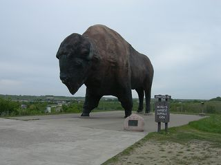 Lgst buffalo jamestown