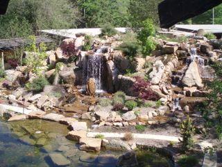 Japanese garden from above 26