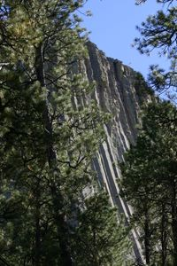 Devil's Tower 0413