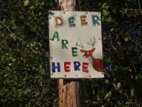 Deer are here sign 48