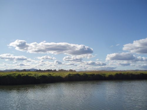 October sky 35
