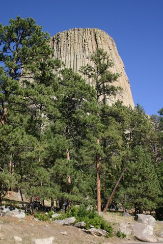 Devil's Tower 0414