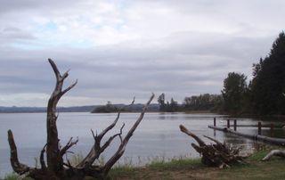 Driftwood clouds 07