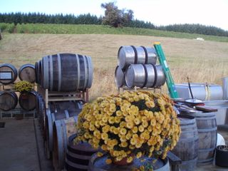 High pass vineyard barrels 15