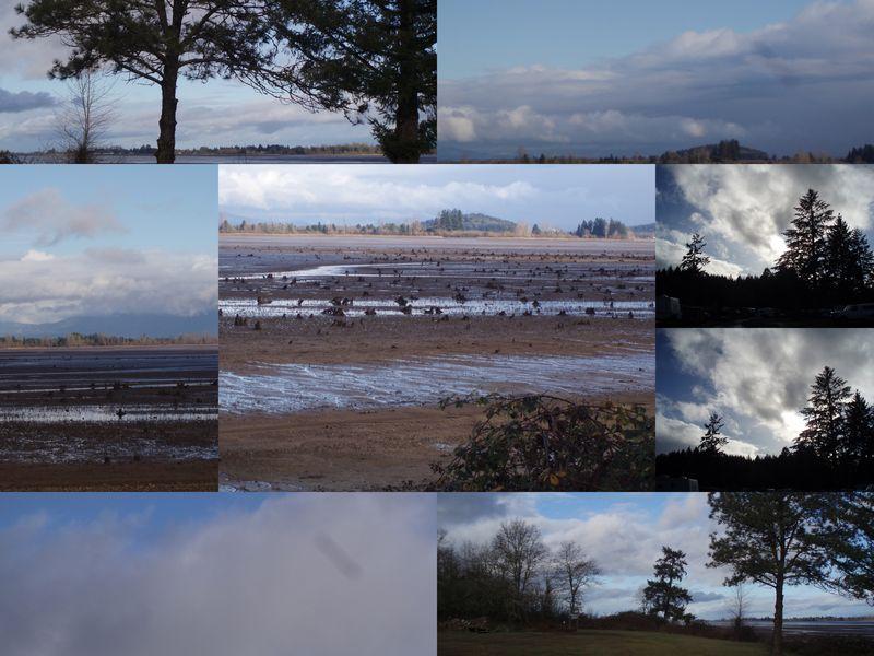 2010-01 (Jan)-10