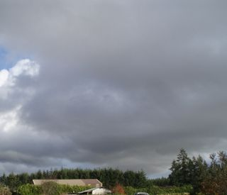 Alvadore sky 011