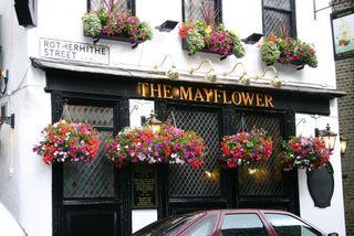 Mayflower street closeup