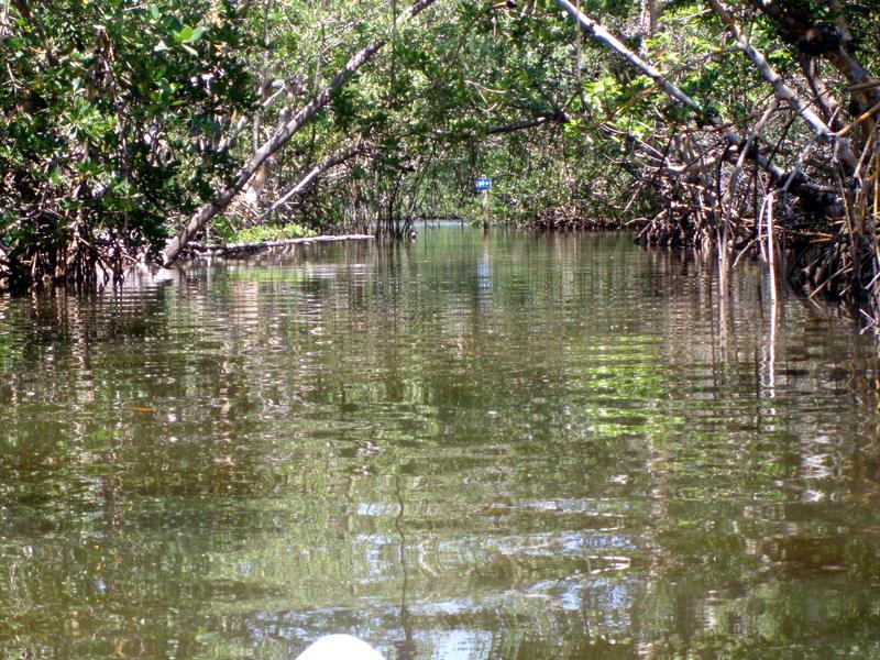 Kayak trail024