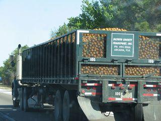 Orange trucks