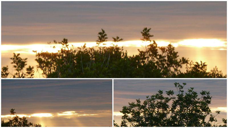 Red sky morning 1 201l