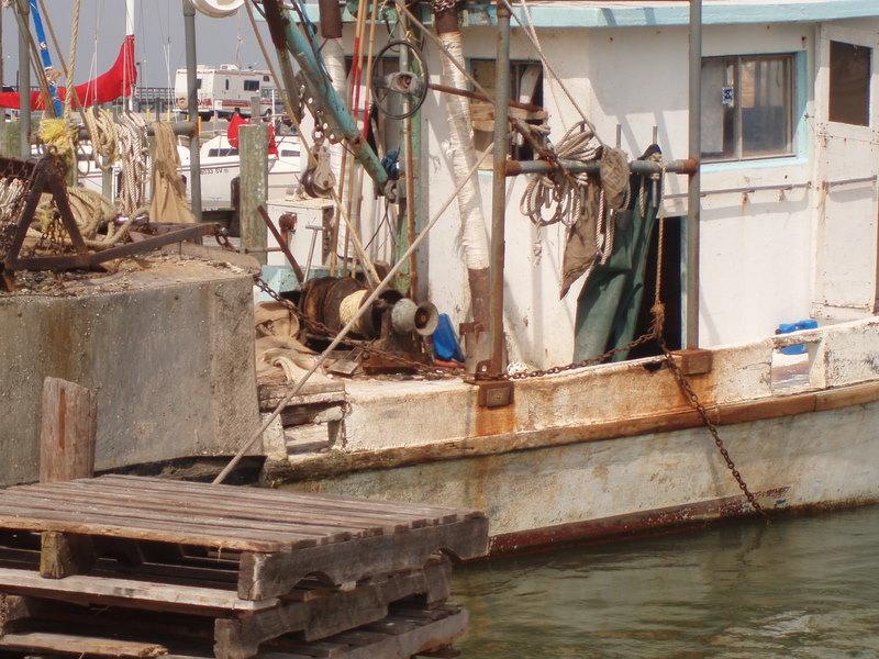 Oyster boat fulton harbor
