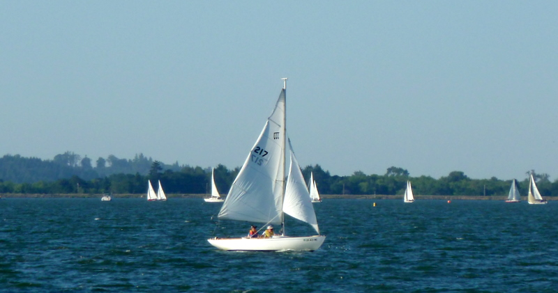 Sailboat race-1