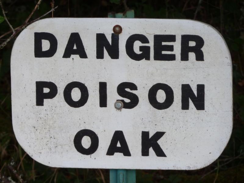 Poison oak sign