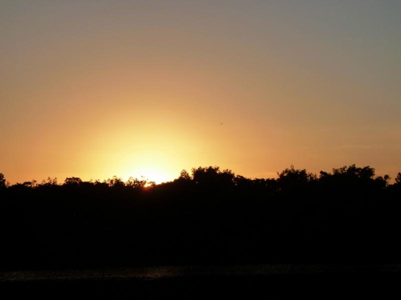 Sun sight week 1