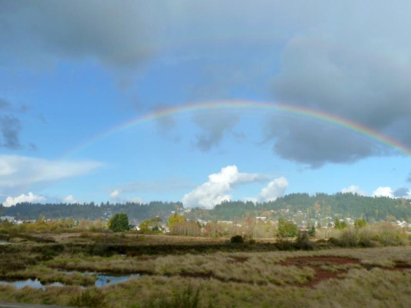 Rainbow drive by-1