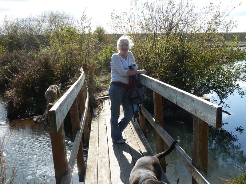 Cyndi rickety bridge qt pond