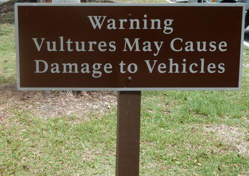 warning vultures