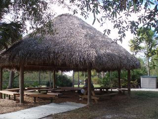 Thatched shelter31