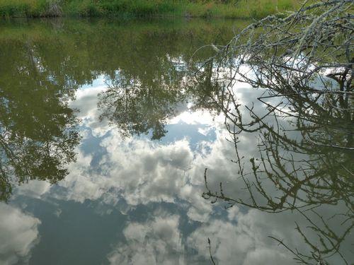 Upside down sky reflection