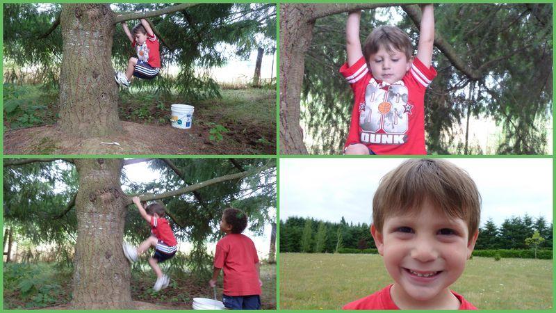 Kids cyndis yard2