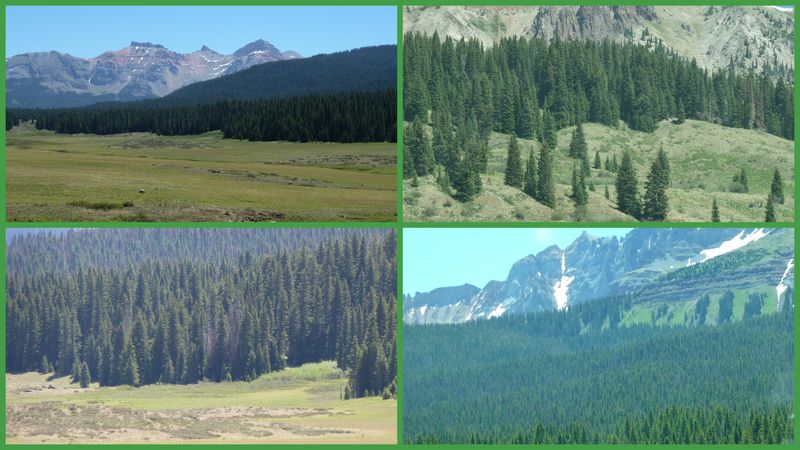 Colorado -- end of roadtrip summer 20121