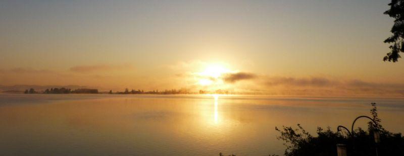 gold sun rise 2