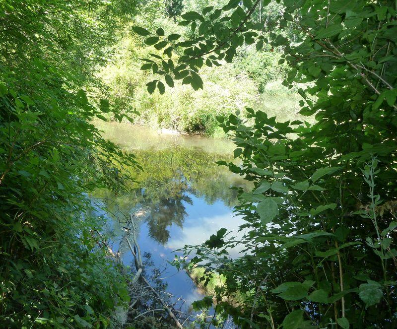 Long Tom riverbank