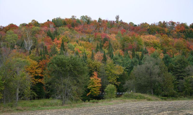 Vermont hills 2003 07
