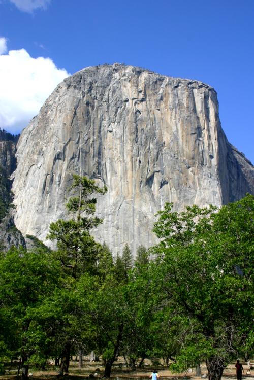 Yosemite NP U 063