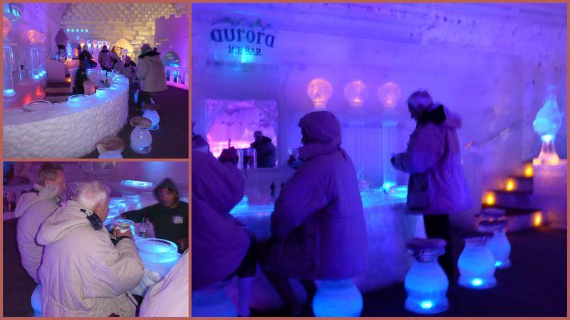 Ice Museum6