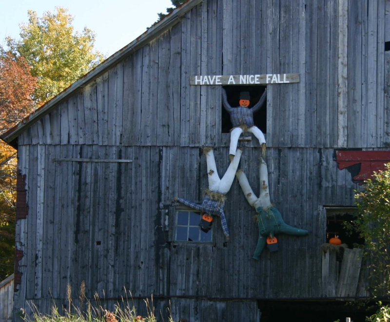 Barn fall croped