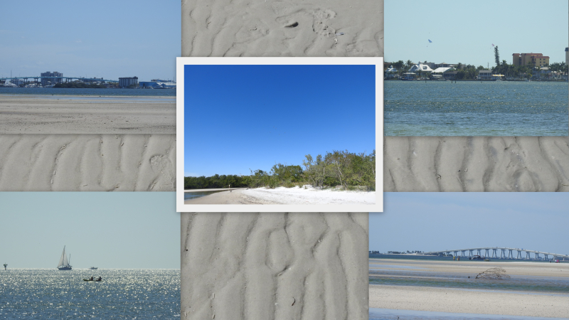 Bunche beach feb 2019-001