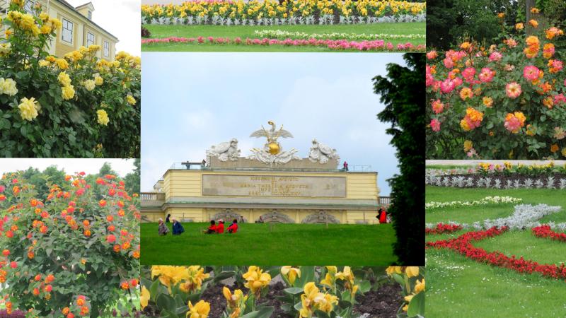 2 Vienna Austria5