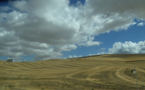 Palouse country