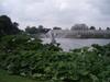 Kew_gardens2