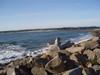 Surf_wb_46_3