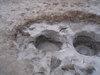 Mudpot_holes_083
