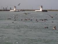 Port_a_ferry_005_2